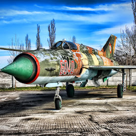 The fighter by Andy Dogaru - Transportation Airplanes ( old, mig -21, colors, jetfighter, military )