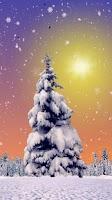 Screenshot of Winter Trees Live Wallpaper