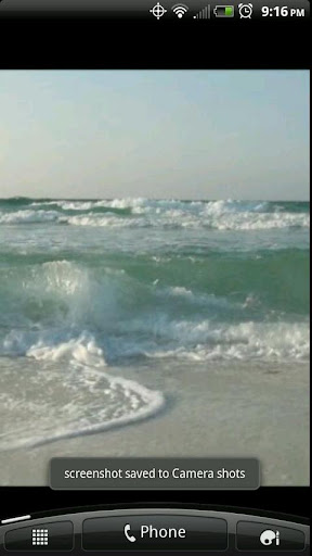 A Live Gulf of Mexico