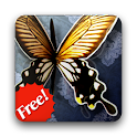 Twirly Butterfly Wings - Free icon