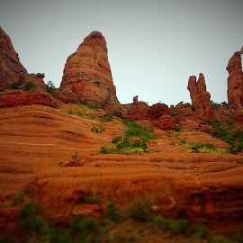 Sedona Red Rocks by Christina Semerad - Landscapes Deserts ( desert, scenic view, yogi bear, red rocks, landscapes, sedona )