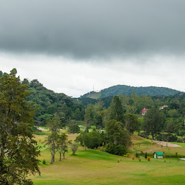 Coming Rain by Yasser Abusen - Sports & Fitness Golf ( clouds, hills, golf course, green, trees, golf, forest, rain )