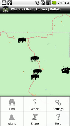 Where's A Bear