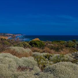Scenery along Great Ocean Road-Australia by Wim Swyzen - Landscapes Prairies, Meadows & Fields ( great ocean road, australia, victoria, scenery )