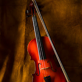 The Violin by Rakesh Syal - Artistic Objects Musical Instruments (  )