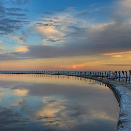 Sunset - Newcastle Beach by Jaki Shipp - Novices Only Landscapes ( clouds, bird, reflection, seagull, newsouthwales, sunset, australia, nsw, newcastle, beach )
