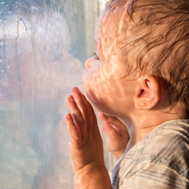 by Magdalena Green - Babies & Children Toddlers ( kiss, reflection, window, glass, sunlight, boy, rain )