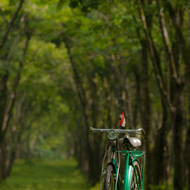 my bicycle by Joeli Oie - Transportation Bicycles