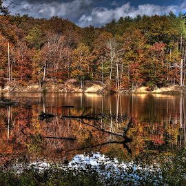 Fall Colors of Indiana by Geoffrey Chen - Landscapes Mountains & Hills ( indiana, color, autumn, fall, leaves, colorful, nature )