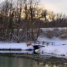 by Gordana Trošić-Kliska - Landscapes Weather ( maksimir, winter, park, zagreb,  )