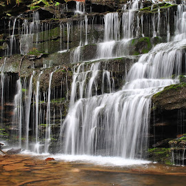 Rosecran Falls by Dennis Crapser - Nature Up Close Water ( water, pa, waterfall, nature up close, clinton co. )