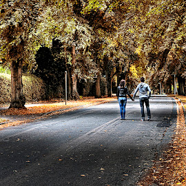 Couple by Greg Brzezicki - City,  Street & Park  Street Scenes ( love, street, trees, couple, leaves,  )