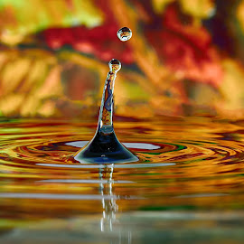Water drop by Nizam Akanjee - Abstract Water Drops & Splashes ( water drop,  )