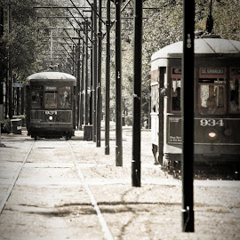 Down St. Charlies by Andy Roth - Transportation Trains ( new orleans, street car, la, nola, st. charles,  )