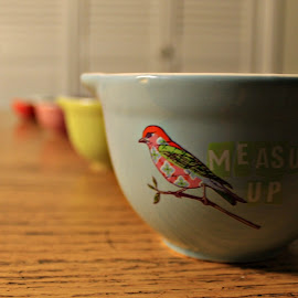Measure Up by Hannah Humbert - Artistic Objects Cups, Plates & Utensils ( bird, measuring cups,  )
