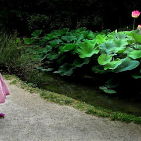 Little girl and the water lily by Lidija P - City,  Street & Park  City Parks