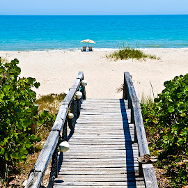 Wood Bridge to Two Chairs at Beach by Robert Castellino - Landscapes Beaches ( beach scene, atlantic ocean, florida, vero beach, beach, florida costline )