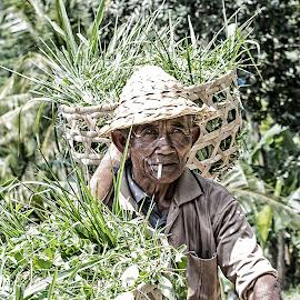 perjuangan by Allan Dharmawan - People Portraits of Men