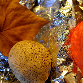 Warm Colors by Rumiana Doncheva - Artistic Objects Still Life ( mushroom, lantern, colors, leaf )