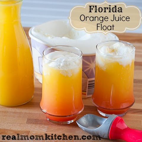 Florida Orange Juice Float