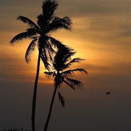 Beauty Of Dusk by Basil Xavier Simon - Landscapes Sunsets & Sunrises (  )
