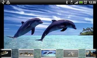 Screenshot of Smart Kids Games Free