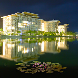 Lily Pads and Luxurious Pads by Raizel Kiong - Buildings & Architecture Office Buildings & Hotels