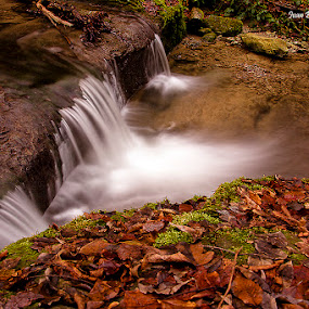 Cascade by Ivan Bertusi - Nature Up Close Water ( water, red, autumn, colors, cascade )