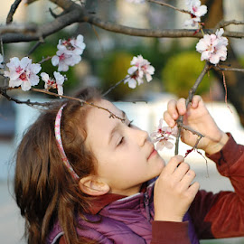 enjoying the tree blossoms by Rodica Ruka - Babies & Children Child Portraits ( portrait )