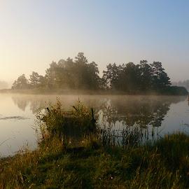 A foggy morning at Oknö,Mönsterås,Sweden by Lisa von Steijern - Landscapes Weather