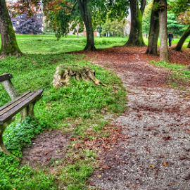 Walking path by Oliver Švob - City,  Street & Park  City Parks ( urban, karlovac, bench, tree, park, street, path, city, public, furniture, object, , fall, color, colorful, nature )