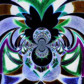 Turning Into A Butterfly by Yvonne Collins - Digital Art Abstract ( edited, abstract, butterfly, digital art, photography, turning )