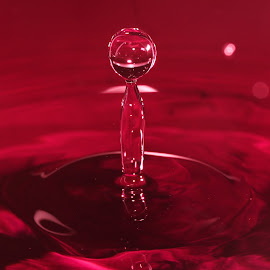 red by Casey Mitchell - Abstract Water Drops & Splashes