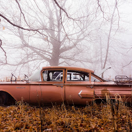 Old Abandoned Car in the Yard by Ken Brown - Transportation Automobiles ( old, wheels, rusty, leaves, morning, landscape, weathered, dilapidated, foggy, damp, fog, metal, autumn, cars, fall, trees, rust, decrepit, decaying, abandoned )