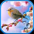 App Flower Live Wallpaper APK for Kindle
