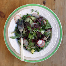 Mixed Green Salad with Horseradish Dressing
