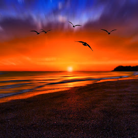 Lovely Sunset by Mustafa Faour - Landscapes Sunsets & Sunrises ( sunset, sea, seascape, landscape, sun )