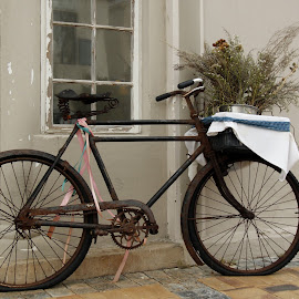 by DebbieSteve Orchard - Transportation Bicycles (  )