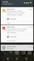 Screenshot of SMS Ticket
