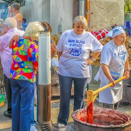 Plum Days Festival in Sirač by Štefan Brajković - News & Events Entertainment ( croatia, bjelovar-bilogora county, plum days festival in sirač, sirač )
