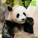 Panda World icon