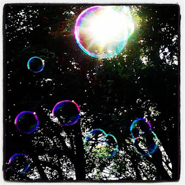 Bubbles in the sunshine  by Pip Holden - Instagram & Mobile iPhone