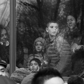 Looking Out The WIndow by VAM Photography - Black & White Street & Candid ( macysthanksgivingparade, parade, b&w, nyc, people,  )