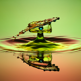 waterdrop by Muhammad Berkati - Abstract Water Drops & Splashes ( abstract, macro, waterdrop )