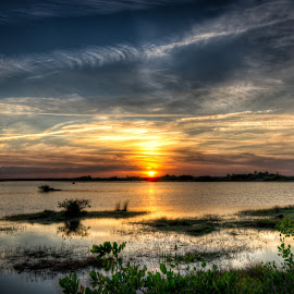 Sunset Over Florida Marsh by Lee Mari - Landscapes Sunsets & Sunrises