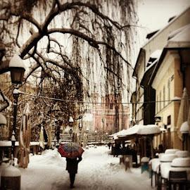 by Peter Litavsky - Instagram & Mobile iPhone ( ljubljana, center )