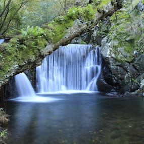 Waterfall in Lousã by Nuno Miguel Valente - Landscapes Waterscapes ( serra da lousã, aldeias de portugal, lousã, aldeias de xisto,  )