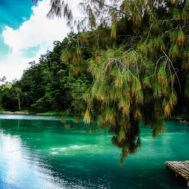Dieng's Lake by Yulian Prasetya - Nature Up Close Water ( #lake #dieng )