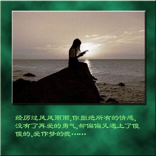 淡淡的友谊最真最纯 - 小草草 - 绿色心情