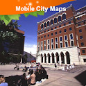 Birmingham Street Map icon